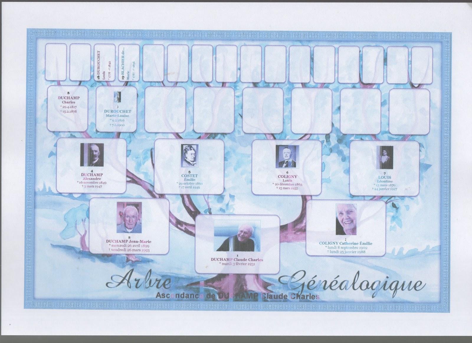 Genealogiste Familial Professionnel Un Arbre
