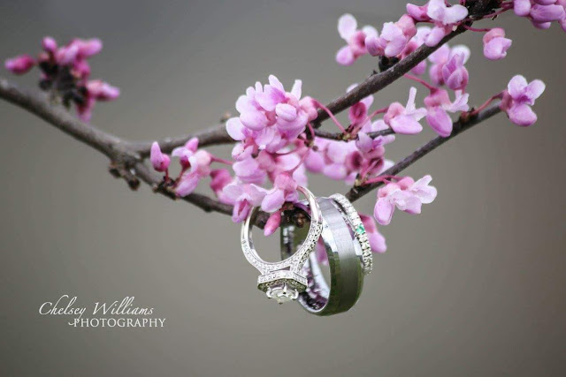 Wedding Rings, wedding band, cherry blossom tree, photography, wedding photographer