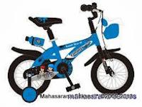 Sepeda Anak Evergreen EG1263 QStar 12 Inci