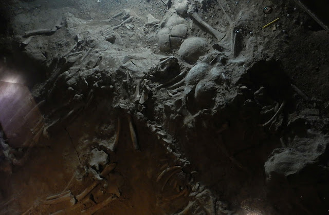 Research suggests sacrificial victims at Yinxu Oracle Site were captives, not slaves