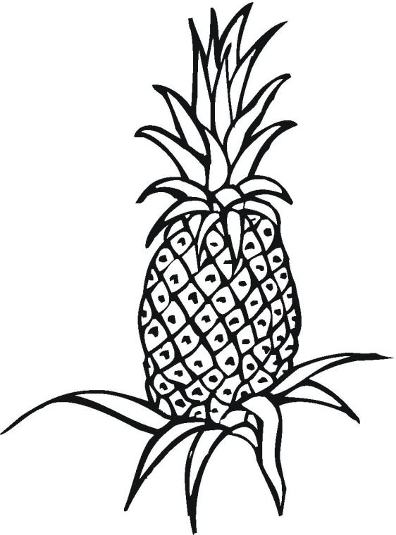 Coloring Pages for Kids: Pineapple Coloring Pages for Kids