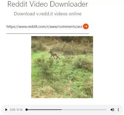 Cara Download Video Reddit-3