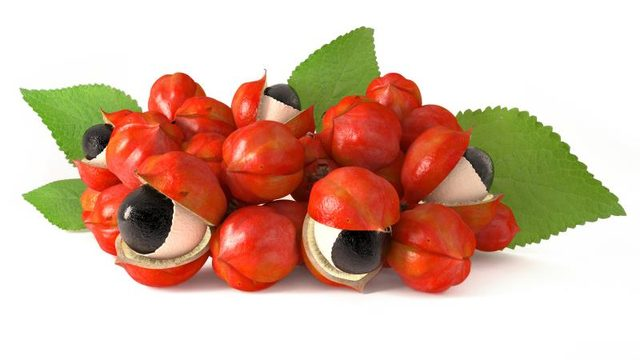 Guarana Benefits