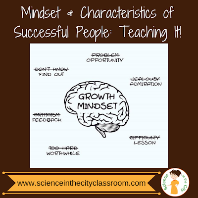 Mindset and Characteristics of Successful People: Teaching It!