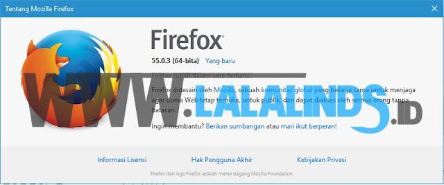 Download Mozilla Firefox 55.0.3 Offline Installer Terbaru