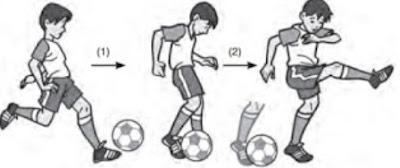 http://43sports.blogspot.com/2016/09/teknik-dasar-cara-menendang-bola.html