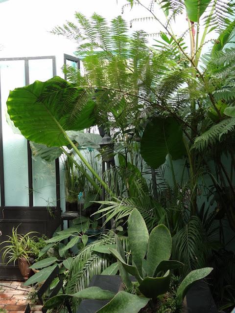 (07) Le jardin de Bésignoles - Privas - Page 4 DSC00035