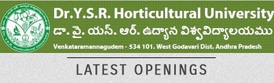DR YSR Horticultural University Recruitment