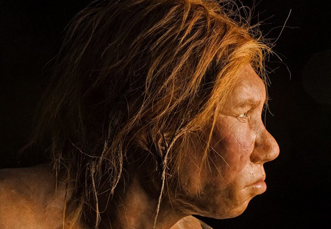 Penelitian Neanderthals started making their own fire using stone tools