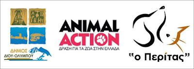 Η GAWF/Animal Action στο Λιτόχωρο. Σε συνεργασία με το Δήμο Δίου – Ολύμπου και τον «Περίτα»