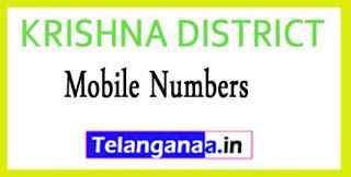 KRISHNA DISTRICT Tahsildar (MRO) OFFICE Phone Numbers-Mobile Numbers