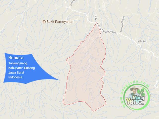 PETA : Desa Buniara, Kecamatan Tanjungsiang