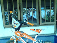 "Puisi Anak ""Sepeda Kecilku"""