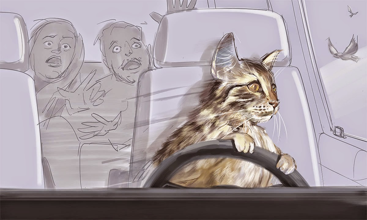 Toonces The Driving Cat Song Attractive Offer