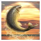Big Fish King v1.0.0 Apk Mod [Money]