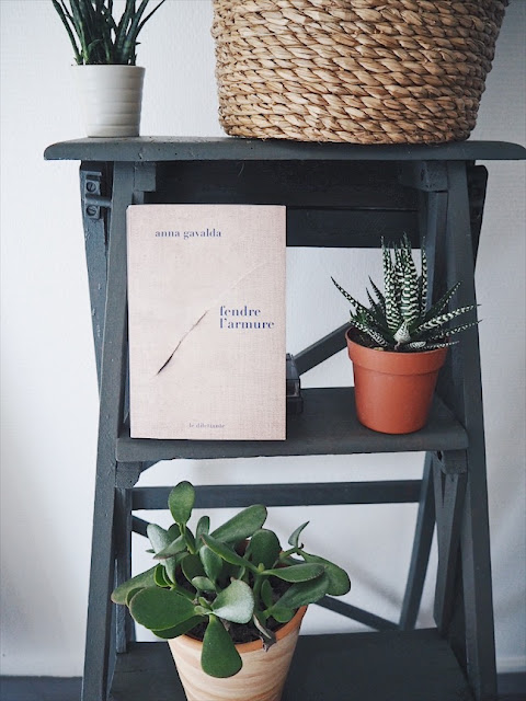 Fendre l'armure, le nouveau roman d'Anna GAVALDA