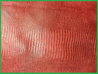 mibebi.com/kulit kadal