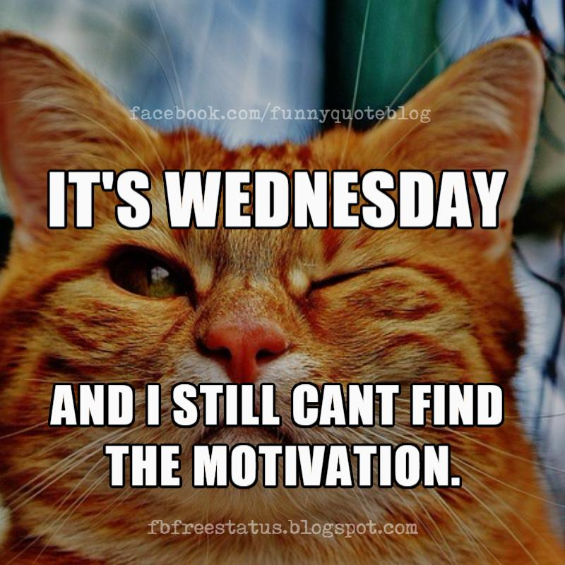 It's Wednesday Memes, It's Wednesday and i still can't find motivation.