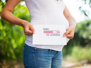 pola makan diet ibu hamil, pola diet untuk ibu hamil, menu diet ibu mengandung