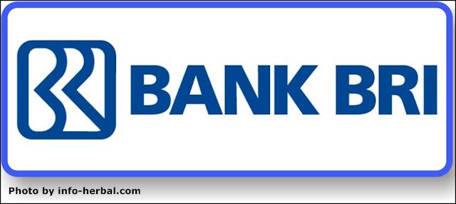 Layanan Bank BRI Anak