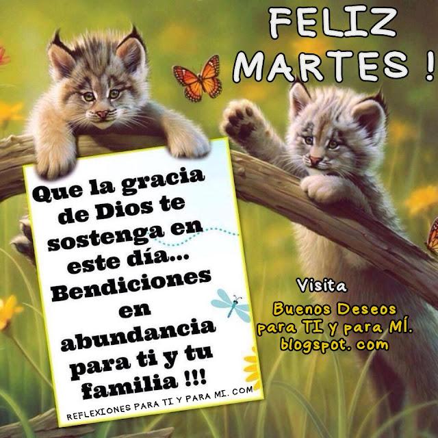 Que la gracia de Dios te sostenga en este día... Bendiciones en abundancia para ti y tu familia !!!  FELIZ MARTES !