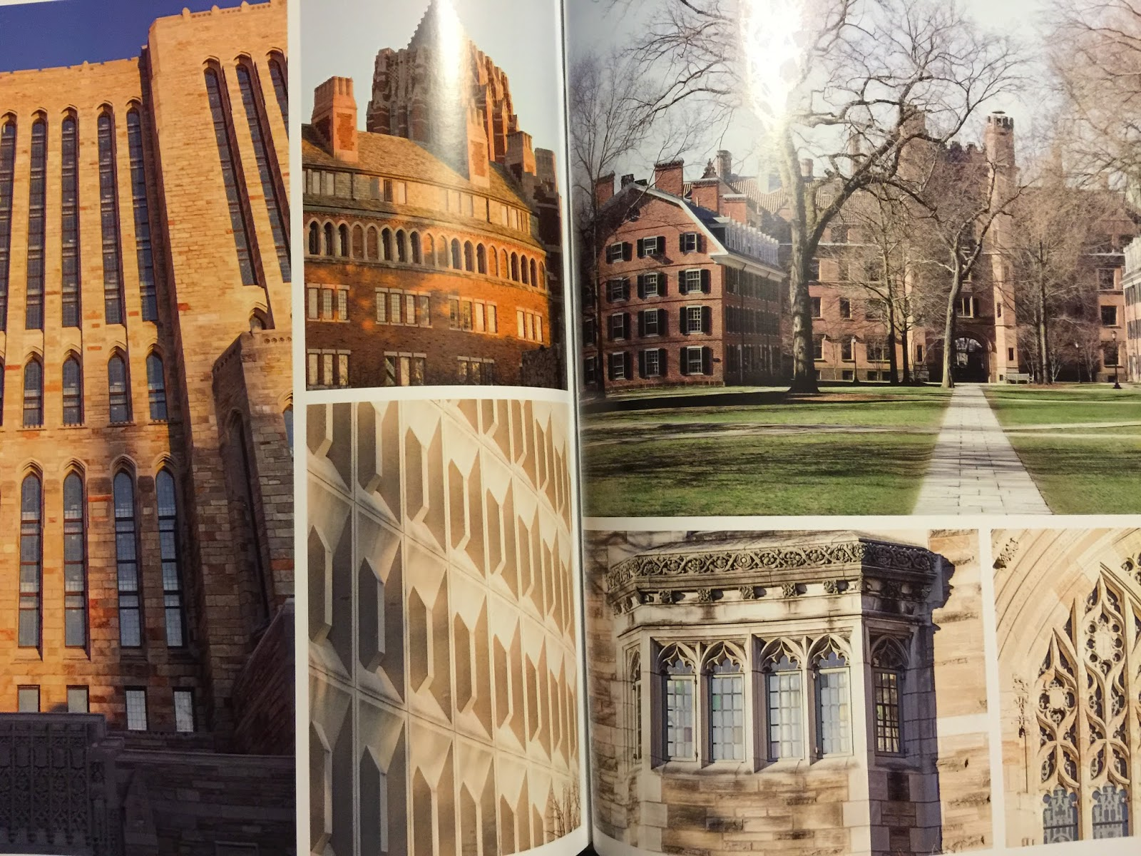 The Pewter Wolf Goodread Most Beautiful Universities In