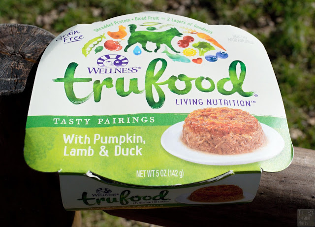 A container of Wellness TruFood Tasty Pairings with Pumpkin, Lamb & Duck wet dog food