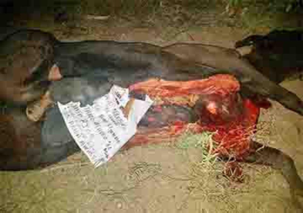 Lo ejecutan por ladrón y meten su cadáver en una vaca