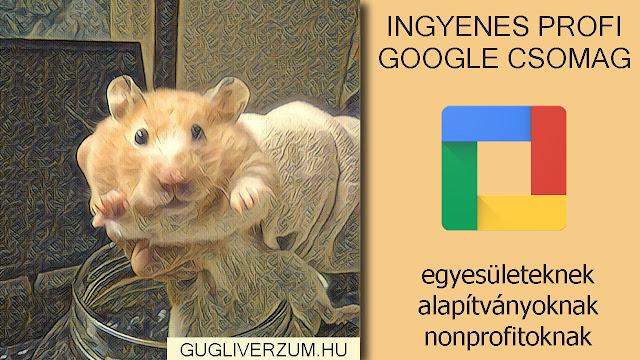 Google Nonprofit szervezetek program