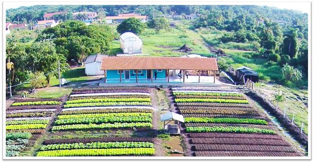 EcoHorta produtos orgânicos e hidroponia urbana da Ilha Comprida contam com programa de visitação