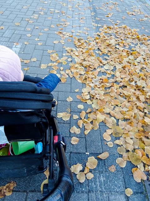 big mamas home, viikkokatsaus, Pikku E, syksy, lokakuu, Helsinki, Vuosaari
