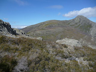 Pico Ocejón desde Cerro del Robledo Castellar