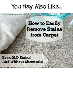 http://proverbsthirtyonewoman.blogspot.com/2016/01/how-to-easily-remove-stains-from-carpet.html#.WIESX33krcQ