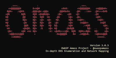 OWASP Amass Subdomain Scanner