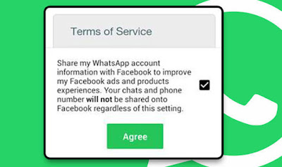 Whatsapp Terms