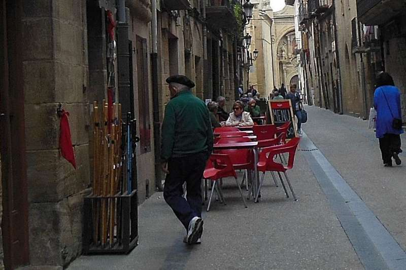 VIANA, Rioja, CAMINO, JOLA STĘPIEŃ