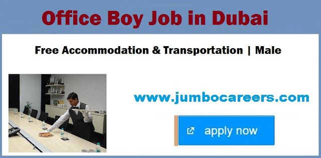 Dubai office jobs latest, office boy job vacancies in UAE,