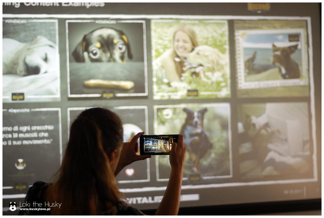 Prezentacja i czas na zdjęcia