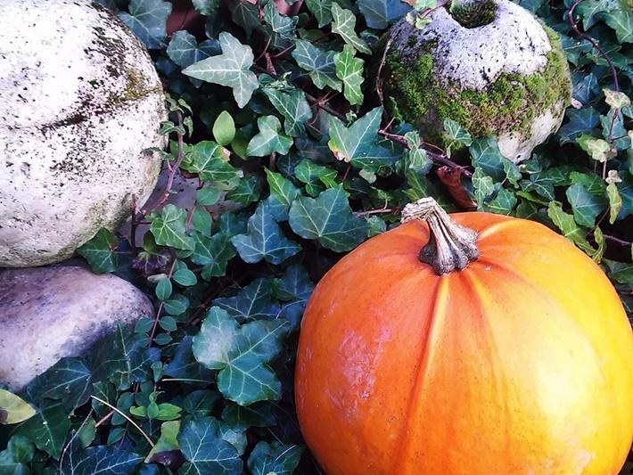 Herbstdeko mit Kürbis und Betonkugel  - DIY vonKarin