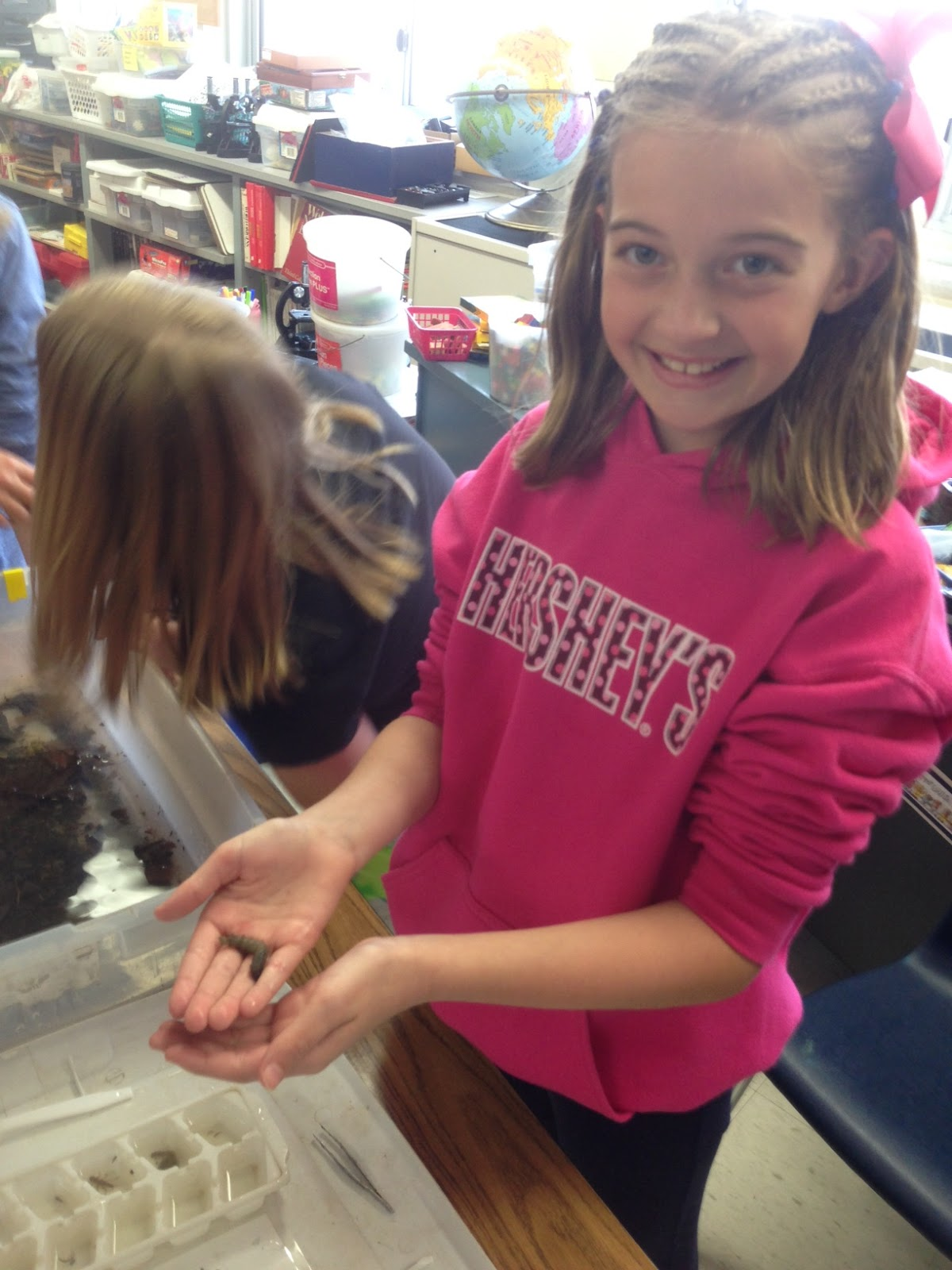 Finger Lakes Trout In The Classroom For Teachers