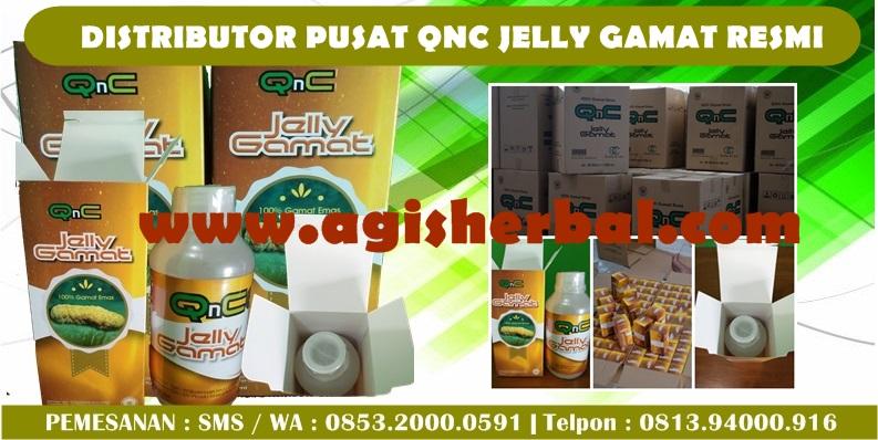 QNC Jelly Gamat Di Apotik