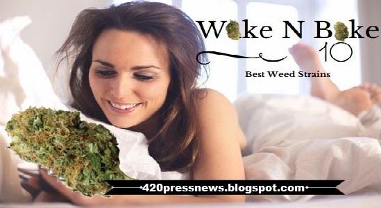 Wake 'N' Bake 10 best weed strains