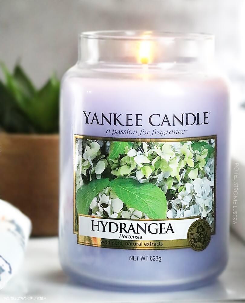 duża świeca yankee candle hydrangea