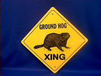 groundhog crossing sign
