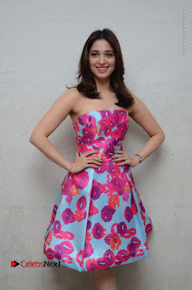 Actress Tamanna Latest Images in Floral Short Dress at Okkadochadu Movie Promotions  0067.JPG