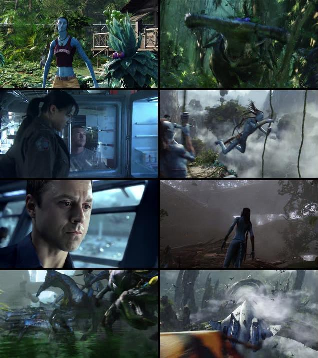 Avatar 2009 Dual Audio Hindi 720p BluRay