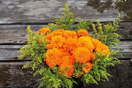 Marigolds And Soli Flower Arrangement
