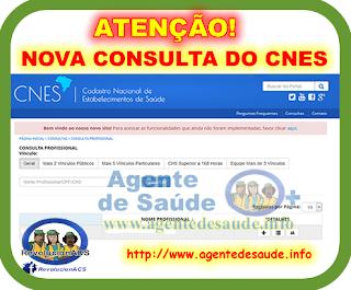 Nova Busca do CNES 1