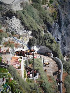 Santorini, Thira, Donkey Station, Osiołki