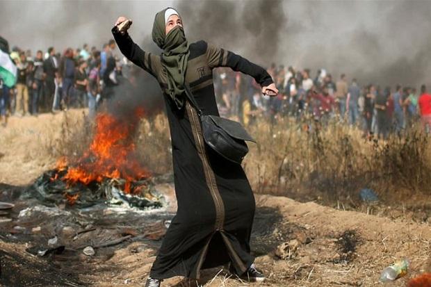 Bela Palestina, Valencia Boikot Israel